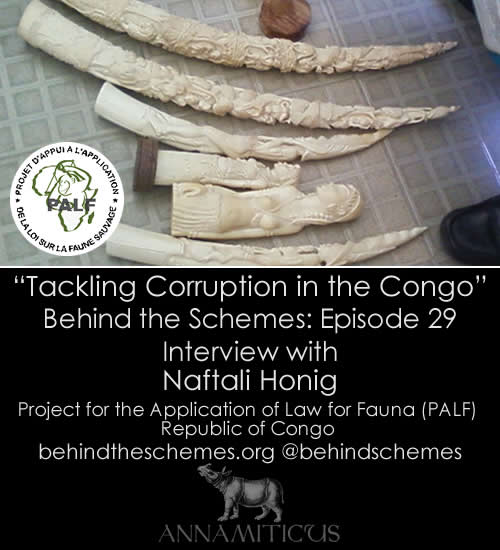 In Episode 29, we're talking about tackling corruption in the Congo with Naftali Honig from PALF.